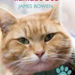 principal-un-gato-callejero-llamado-bob-es_med